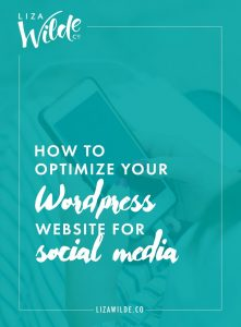 How to Optimize Your WordPress Website for Social Media | Liza Wilde Co.
